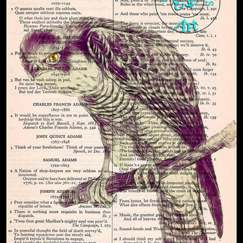 Hawk on a Branch Drawing Art Beautifully Upcycled Vintage Dictionary Page Book Art Print, Bird Art Print
