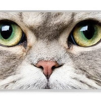 Cat Meow Face On Case,for iPhone 4 iPhone 4s Case, i-graphic Iphone case