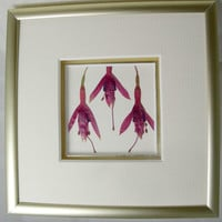 framed pressed flowers,  miniframe, ready to hang wall art