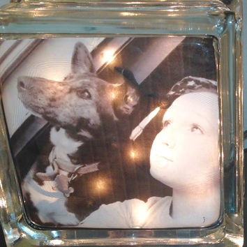 Pets, Animals Lighted Glass Block and Home Glass Decor and Gifts