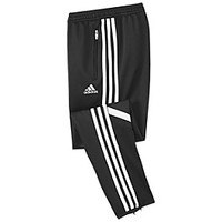 Condivo14 Training Pants