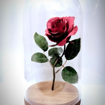 Real Enchanted Rose Beauty And The Beast Disney Fairytale