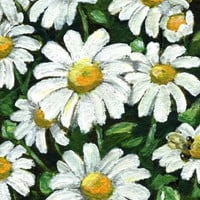 """5x7 art 4x6 floral art print  """"Little White Daisies And A Bee"""" floral wall art painting wall deco (31)"""