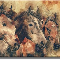 Vintage Horses Picture on Acrylic , Wall Art Décor, Ready to Hang