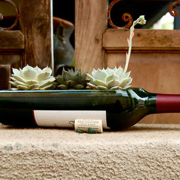 The Original Wine Bottle Garden // Succulent Planter Kit