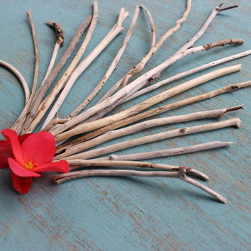 Skinny Driftwood Sticks for Crafts & Beach Wedding Frame , Drift Wood Art  Supplies Nautical Art SKI20