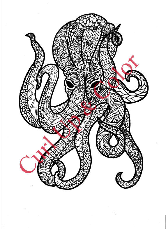 Adult Coloring Page Octopus Instant From Dailydoodler
