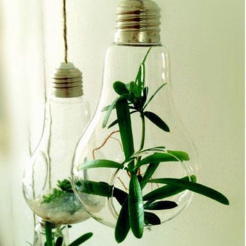 Small Light Lamp Bulb Pot Glass Hanging Vase