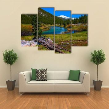 Lyell Fork Of Tuolumne River Multi Panel Canvas Wall Art