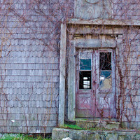 Rustic Photo, Country Photograph, Abandoned Architecture Photo, Andrew Wyeth Style, Fall, Eastern Shore Autumn, Home Decor, Wall Art
