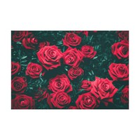 Red Roses with a Black Background Photography Canvas Print