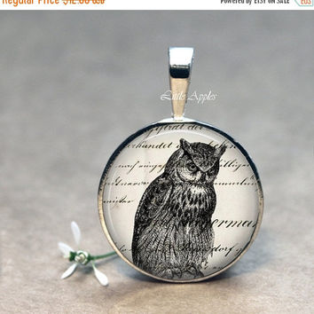ON SALE Owl necklace, bird glass pendant keychain, vintage illustrations, brown black, woodland animal, for him