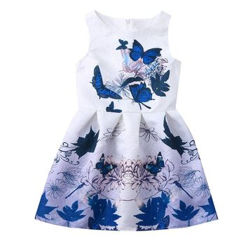 Princess Teenagers Butterfly Dress For Girl