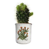 1960's Takahashi Planter / Perfect for Cactus or Succulent / Mid Century Bathroom Storage / Home Decor / Made in Japan