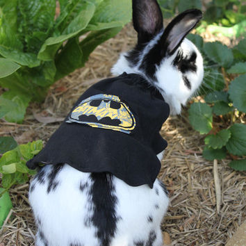 Batman outfit  for your small pet . pet costume  , fancy dress for your bunny