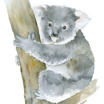 Koala Watercolor