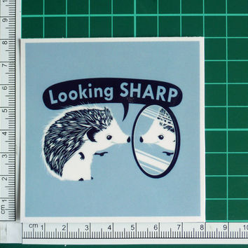 Looking Sharp Funny Porcupine Sticker Decal
