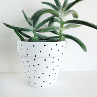 White Dot Hand Painted Plant Pot - 11cm by This Way To The Circus