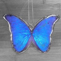 Real GIANT Blue Morpho Butterfly Necklace
