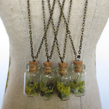 You are my World....Tiny Live Terrarium Necklace  Air Plant, Moss, Magic little live necklace