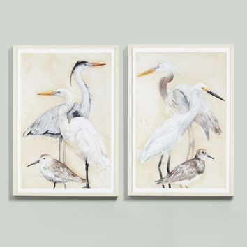 Watercolor Water Birds Art