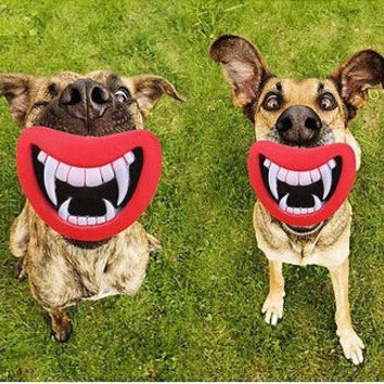 Hot Sale Funny Pet Toy Vinyl Devil's Red Lip Squeak Sound Dog Toys Dog Chewing Puppy dog toy squeak toys for dog pet products = 1706176132