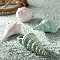 Breakwater Bay Kentledge 4 Piece Sea Shell Figurine Set