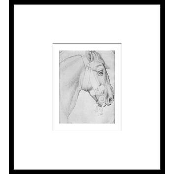 Horse Sketch in Black & White II, Drawings