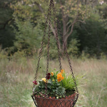 Hanging Wire Basket with Terra Cotta Pot