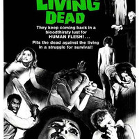 Night of the Living Dead Movie Poster 11x17