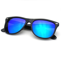 Black Flash Revo Polarized Horned Rim Wayfarer Sunglasses
