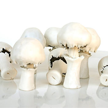 Edible Chocolate Cluster Candy Mushrooms  by andiespecialtysweets