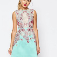 ASOS SALON Applique Lace Sheer Aline Mini Dress