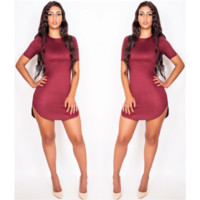 Suede Wine Shirt Dress