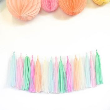Unicorn Party Garland,Pastel Rainbow Garland DIY Tissue Tassel Kit with 15 tassels for 7 ft CH1105,pastel paper straws,confetti