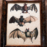Three Bats Art from 1856 Art Print on Parchment Paper Choice of 2 Versions