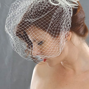 Birdcage Veil with Silk Flower