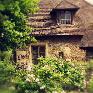 French Cottage Photography, Rustic, Versailles, Paris Photography, Roses, Pink, French Country, Home Decor, Romantic, Shabby Chic, Wall Art