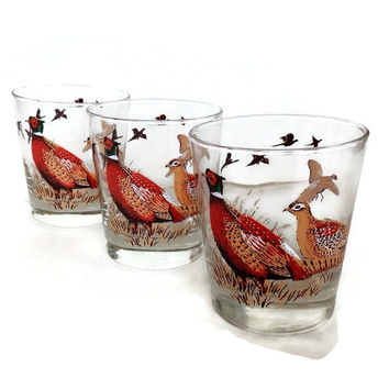 Libbey Vintage Glasses-Pheasants-Double Old Fashion-Set of Three-Wildlife-Woodland-Game Birds-Mid Century Barware-Outdoor Life-Father's Day