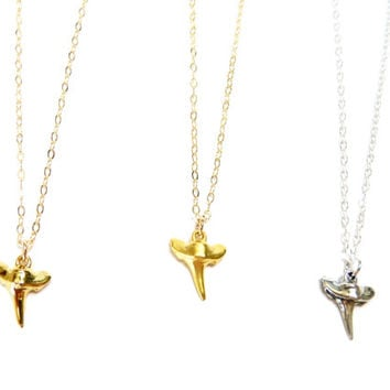 Shark Tooth Necklace / Sterling Silver or Gold Filled Shark Tooth Necklace
