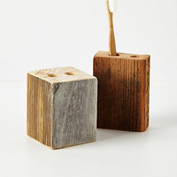 Timber Trail Toothbrush Holder