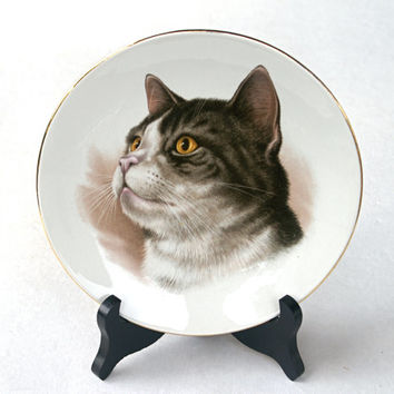 Porcelain Collectible Cat Plate Burleigh Ware Ironstone Made in England
