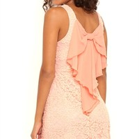 Lace Skater Dress with Chiffon Bow Back