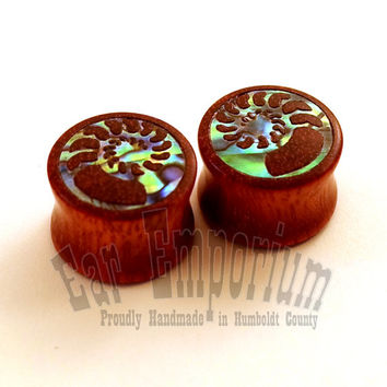 "Abalone Ammonite Inlay on Bloodwood Plugs PAIR 9/16"" (14mm) 5/8"" (16mm) 11/16"" (17.5mm) 3/4"" (19mm) 13/16"" (20.5mm) 7/8"" 22mm 1"" Ear Gauges"