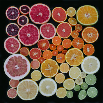 CITRUS (sliced) 10x10 photograph print