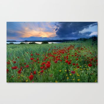 Spring poppies. Sunset at the lake. Canvas Print by Guido Montañés