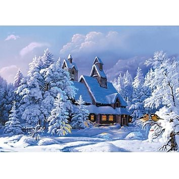 Diy oil painting by numbers decorative canvas painting calligraphy wall brush paint acrylic snow cabin coloring by number Y069