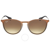 Rayban Erika Metal RB3539 193/13 54 Brown frame / Brown Gradient Lneses