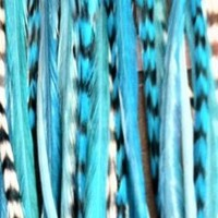 "Range From 4""-6"" Blue with Turquoise with Best Quality Salon Feathers for Hair Extension 5 Feathers"