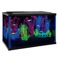 GLO®Fish Starter Kit Aquarium